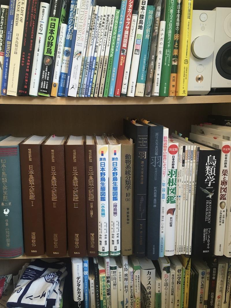 管理人の本棚
