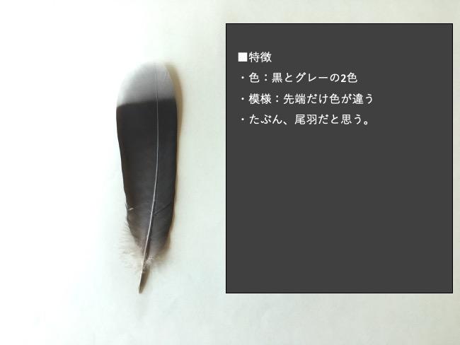羽のあたり付け