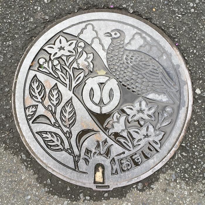 伊勢原市のマンホール-ヤマドリ