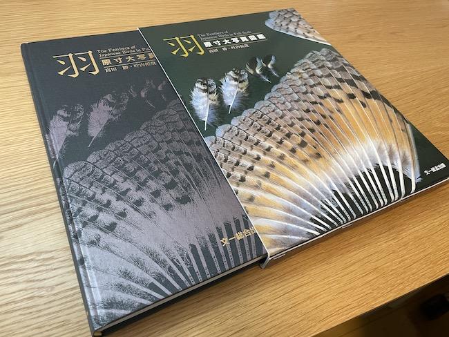 原寸大写真図鑑羽初版