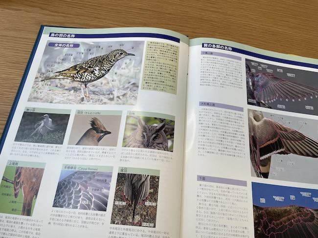 原寸大写真図鑑羽増補改訂版